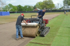 Natural turf renovation